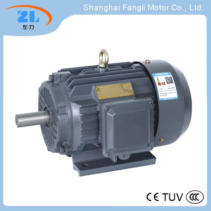 YD-80M1-4/2-4Two - speed motor